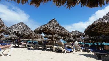 Palapas on the beach